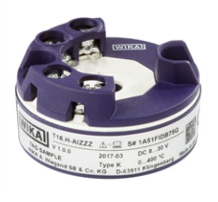 Digital temperature transmitter Model T16